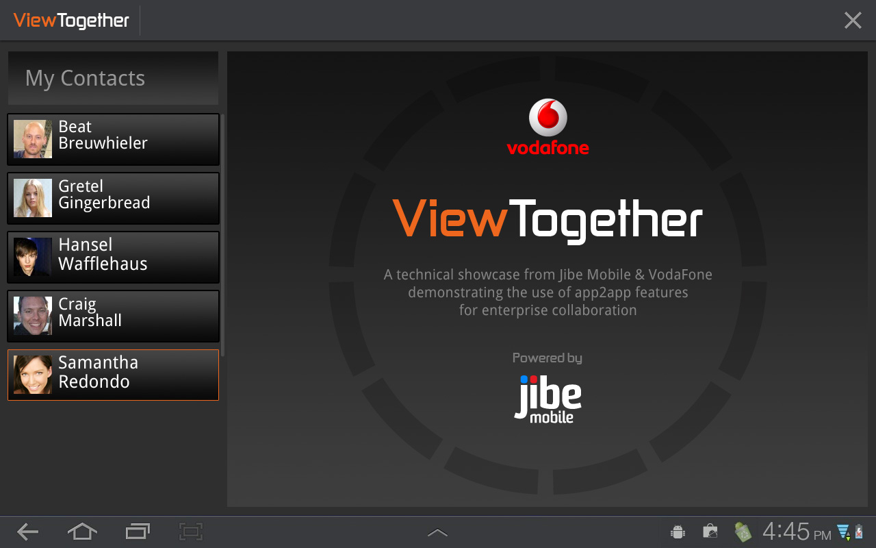 ViewTogether Splash Screen